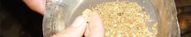 Китай намерен поставить в 2013 году рекорд по добыче золота