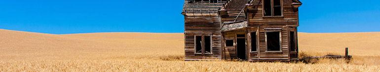 Китай займется фермерством на украинской земле