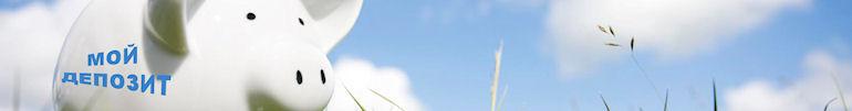 НБУ рекомендует размещать вклады в гривнах