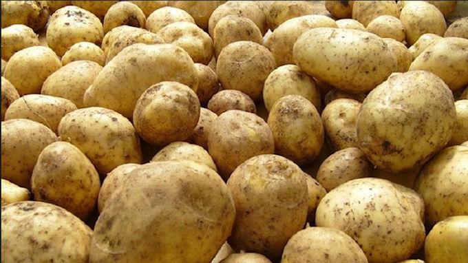 В Киеве стоимость картофеля сократилась в 2 раза