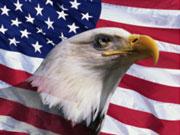 10 ведущих банков в США оштрафованы