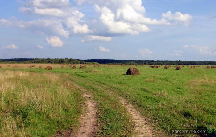 Государство подготовило сюрприз для владельцев земельных паев