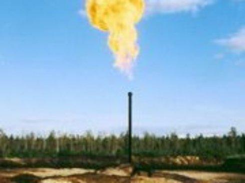Импортный газ для Украины из-за дешевой нефти должен стоить около $200, – эксперт