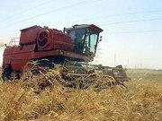 В Украине хотят отменить сертификацию агротехники и продуктов