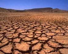 На українські землі прийшла унікальна «потрійна» посуха