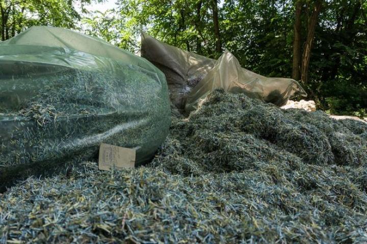 В одном из лесопарков Днепра нашли мешки с порезанными гривнами (фото)