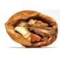 С 2010 года производство грецких орехов в Украине выросло на 25%