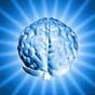 Ученые: Мозг человека уменьшается