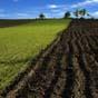 Продуктивность сельскохозяйственных земель в Украине в 6 раз ниже, чем в Германии — Всемирный банк