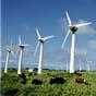 Шотландская ветроэнергия в избытке: будут продавать в регионы