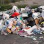 Более 70 стран обязались уменьшать количество пищевых отходов