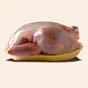 Украина возобновляет экспорт мяса птицы в ЕС