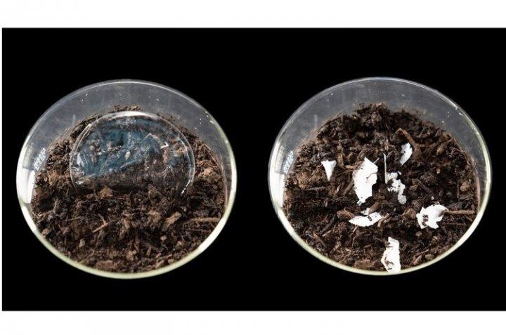 Ученые создали пластик, полностью разлагающийся в воде
